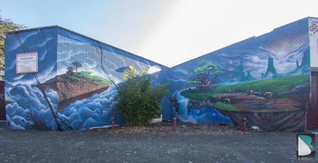 Graffiti-Belgique-Mur-exterieur