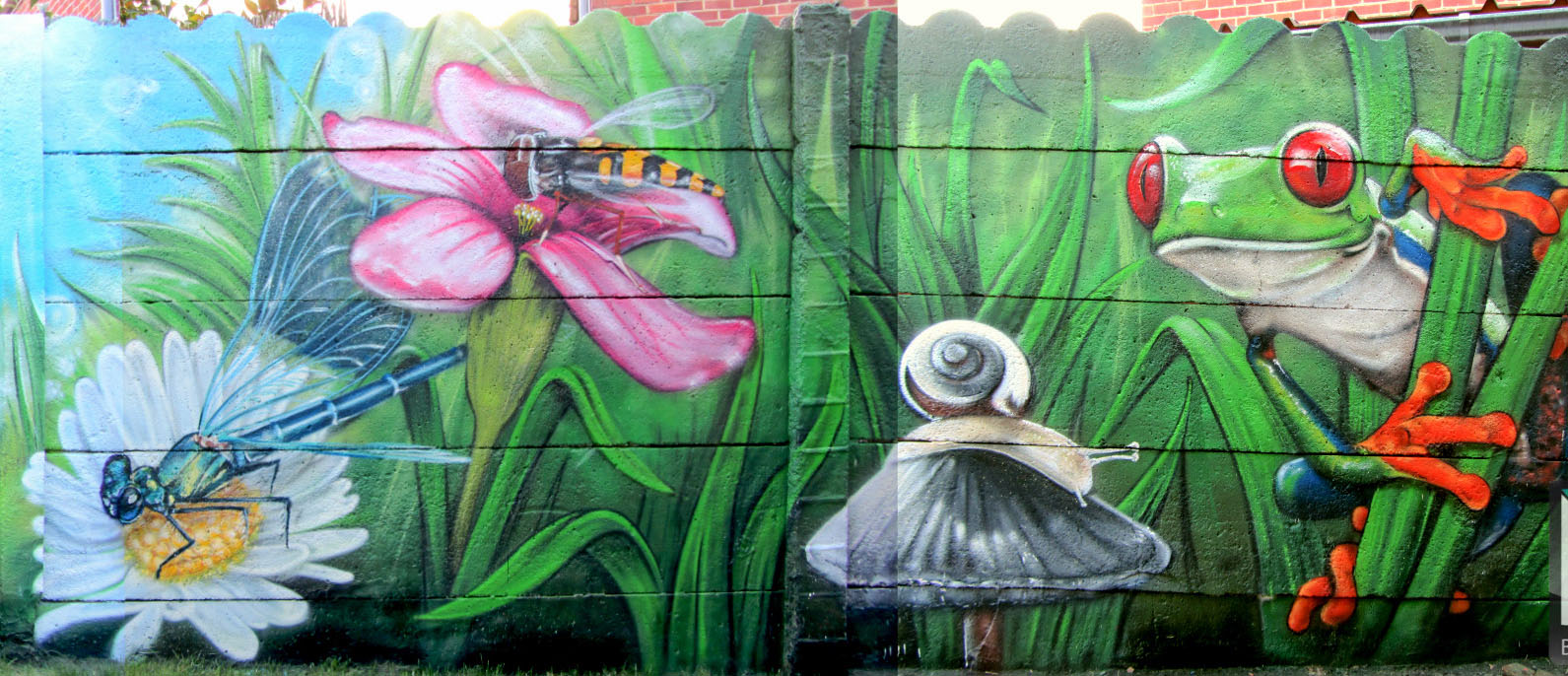 http://www.b-aero.be/wp-content/uploads/Nature-graffiti-belgique.jpg